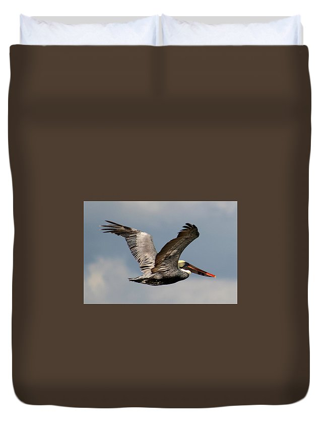 Birds Duvet Cover featuring the photograph Flying Art by Anita Gatrell