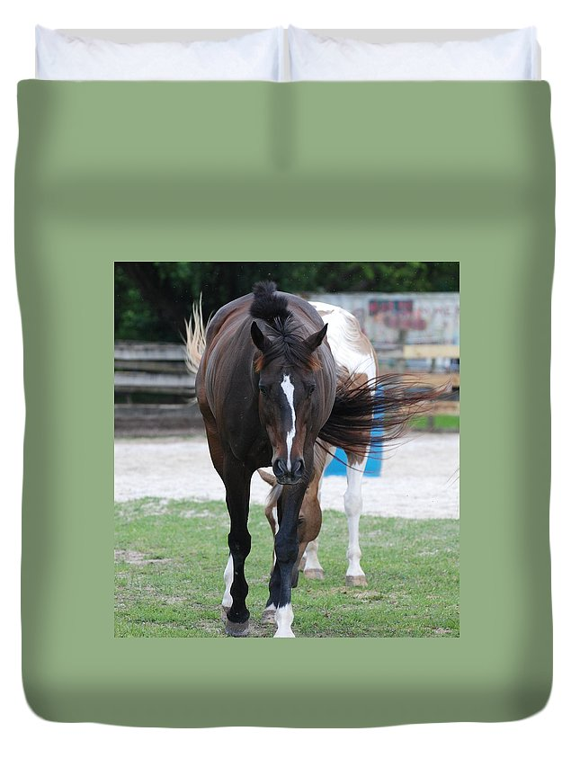 Horses Duvet Cover featuring the photograph Flying Circus by Rob Hans