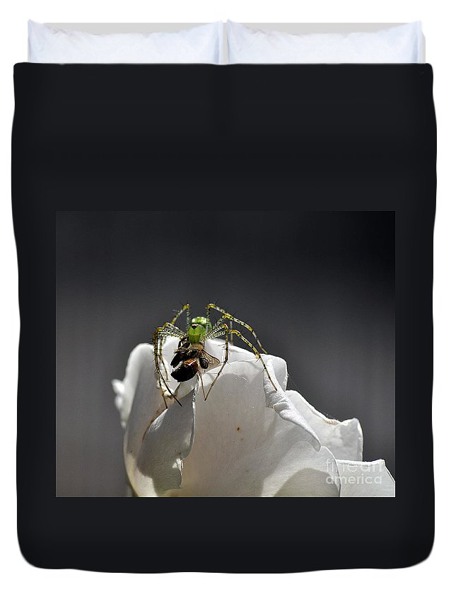 Clay Duvet Cover featuring the photograph Flys At The Picnic by Clayton Bruster