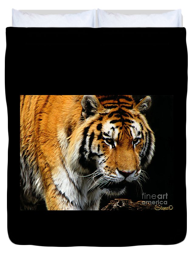 Tiger Duvet Cover featuring the photograph Focused by September Stone