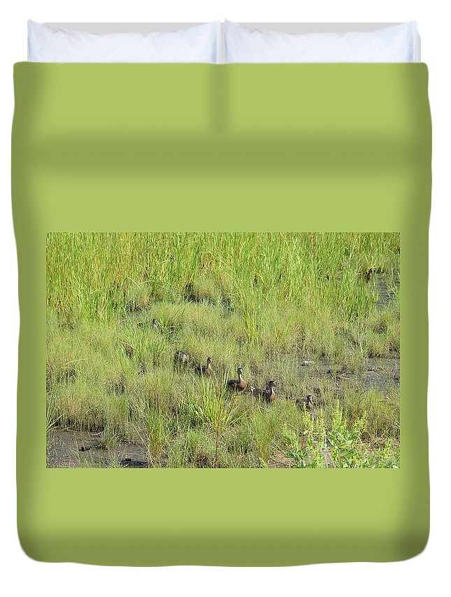 Ducks Duvet Cover featuring the photograph Follow Me by Cheryl Braley