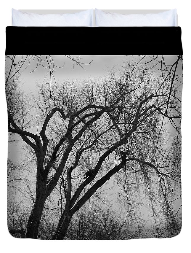 Tree Duvet Cover featuring the photograph Foreboding by Michelle Miron-Rebbe