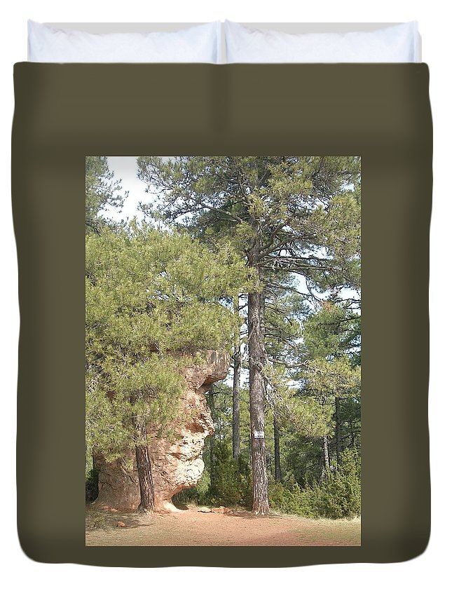 Landscape Duvet Cover featuring the photograph Forest Face by Valerie Ornstein