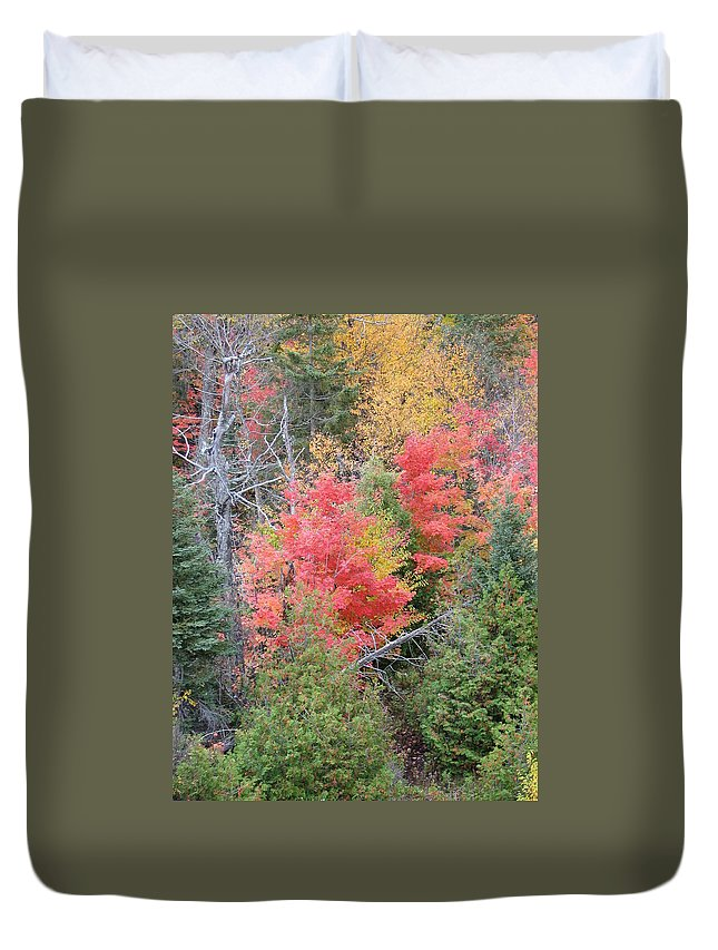 Fall Duvet Cover featuring the photograph Forest Fire by Kelly Mezzapelle