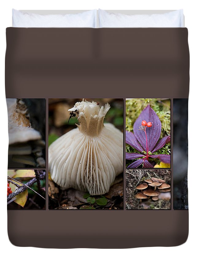 Forest Duvet Cover featuring the photograph Forest Floor by Lisa Knechtel