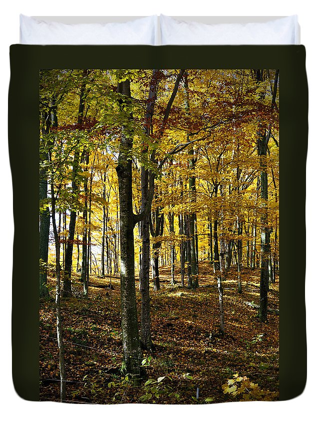 Trees Duvet Cover featuring the photograph Forest Floor One by Tim Nyberg