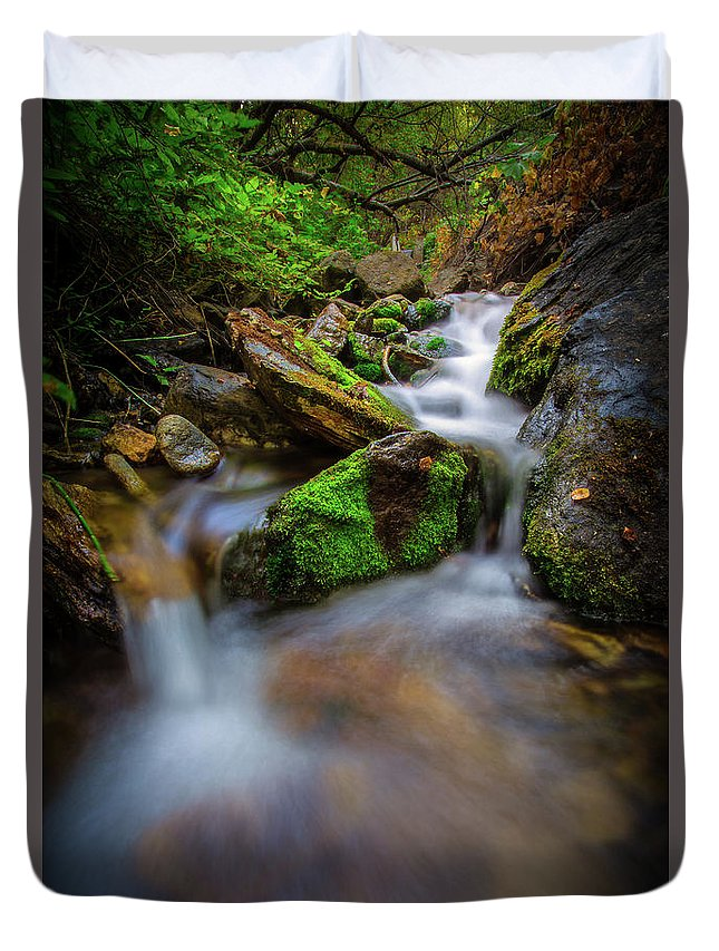 Trailsxposed Duvet Cover featuring the photograph Forest Flow by Gina Herbert