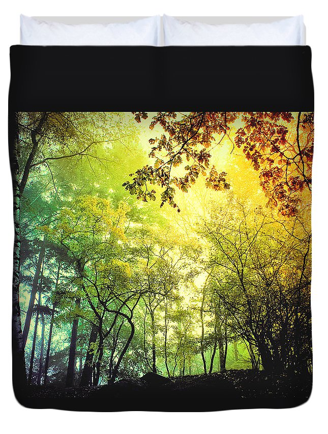 Digital Duvet Cover featuring the photograph Forest Light by BaxiaArt