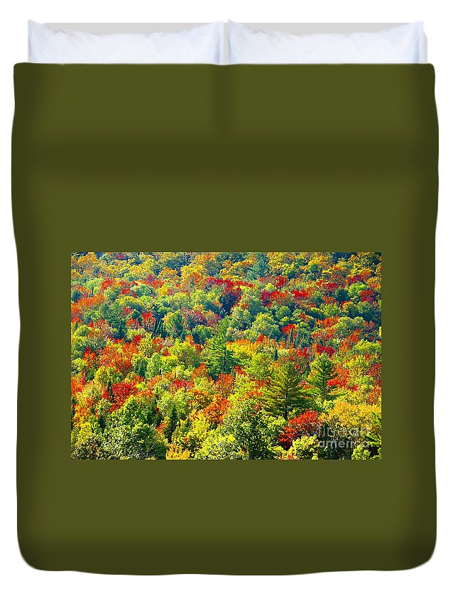 Forest Duvet Cover featuring the photograph Forest Of Color by David Lee Thompson