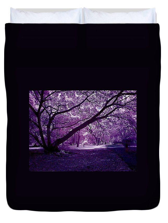 Forest Duvet Cover featuring the photograph Forest by Galeria Trompiz