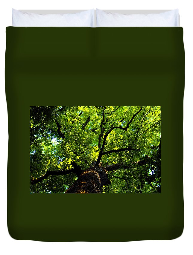 Forest Duvet Cover featuring the painting Forest Top by David Lee Thompson