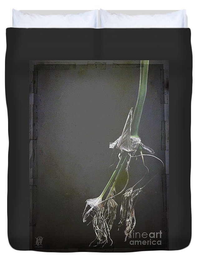 Still Life Duvet Cover featuring the photograph Forever Yours by Jacques Pierre Niemandt