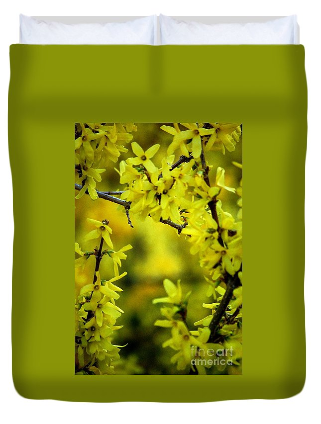 Spring Duvet Cover featuring the photograph Forsythia At The Hacienda by David Lane