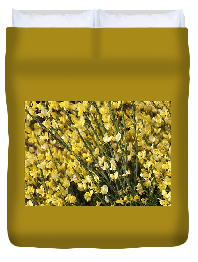 Spring Flowers Duvet Cover featuring the photograph Forsythia by Carol Groenen