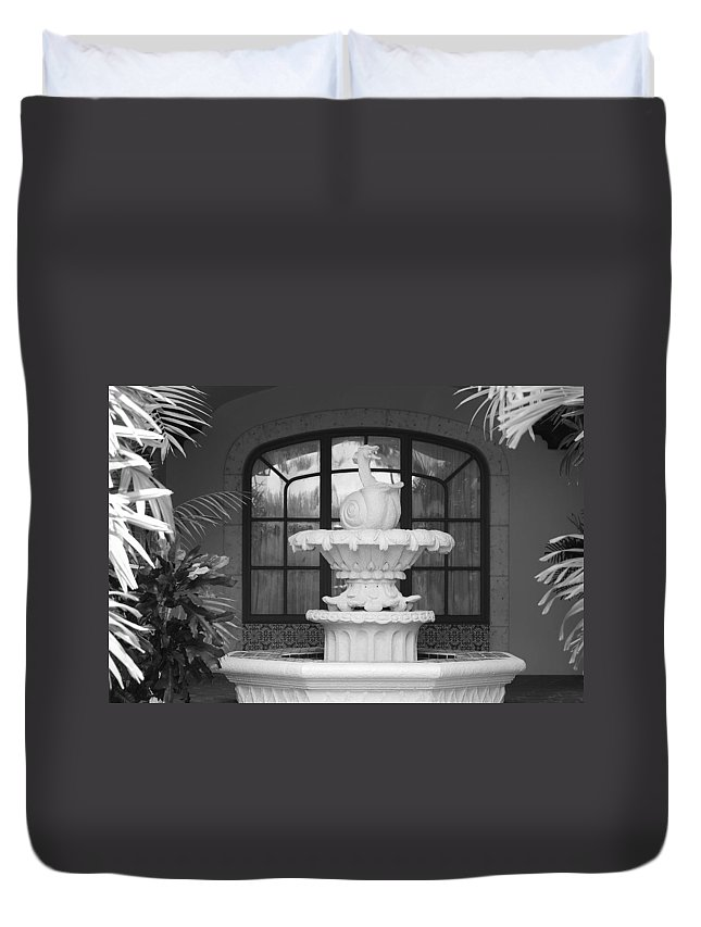 Architecture Duvet Cover featuring the photograph Fountian And Window by Rob Hans