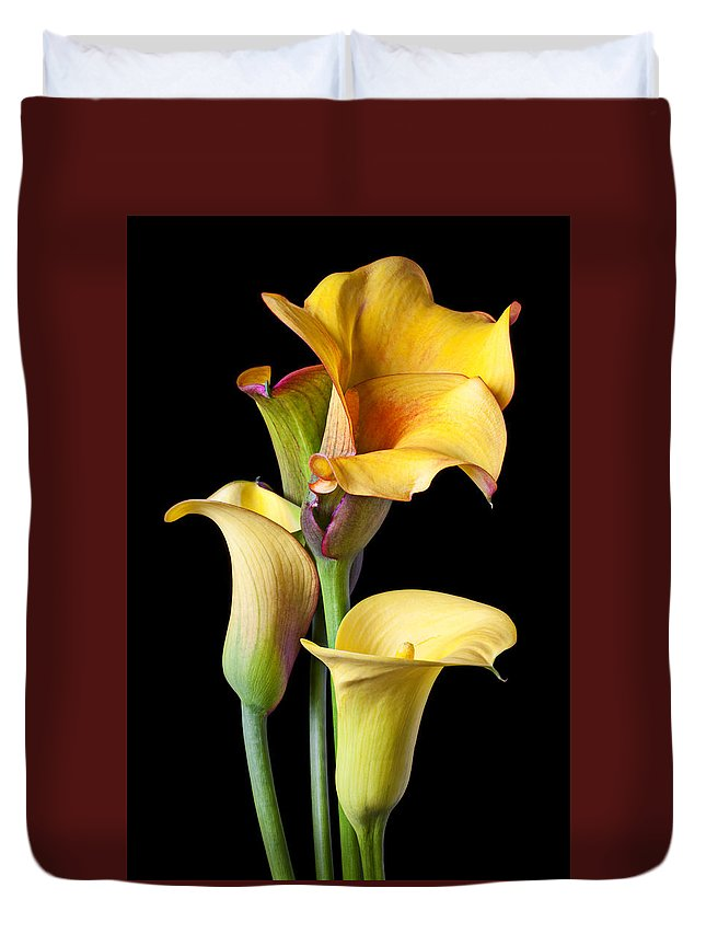 Calla Lily Duvet Cover featuring the photograph Four calla lilies by Garry Gay