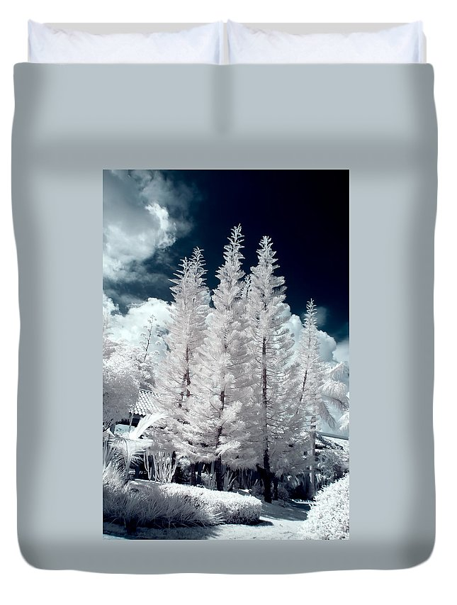 3scape Photos Duvet Cover featuring the photograph Four Tropical Pines Infrared by Adam Romanowicz