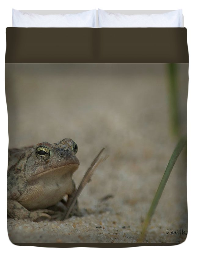 Frog Duvet Cover featuring the photograph Fowlers Toad by Diane Hawkins