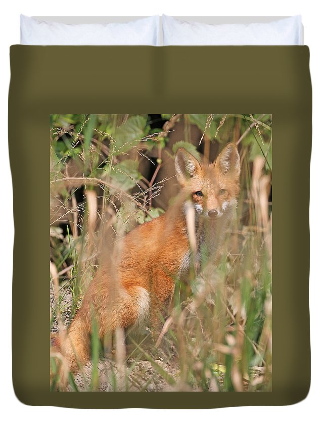 Nature Duvet Cover featuring the photograph Fox by Mike Dickie