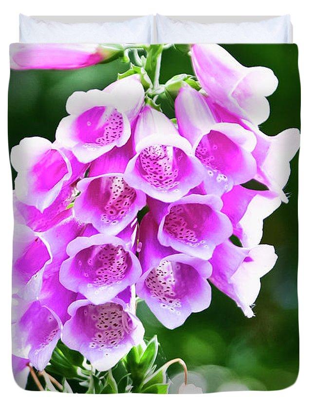 Wildflower Duvet Cover featuring the photograph Foxglove by Albert Seger