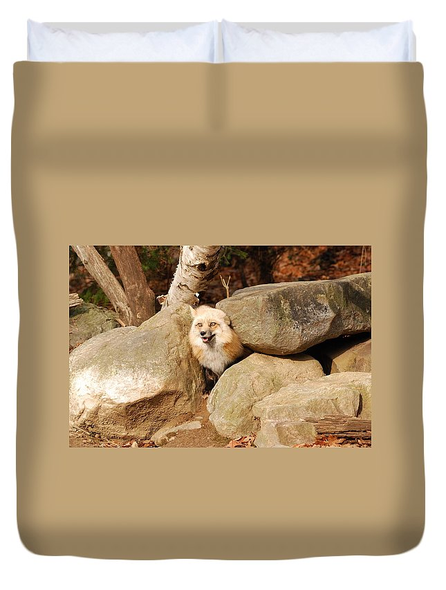 Fox Duvet Cover featuring the photograph Foxy by Lori Tambakis