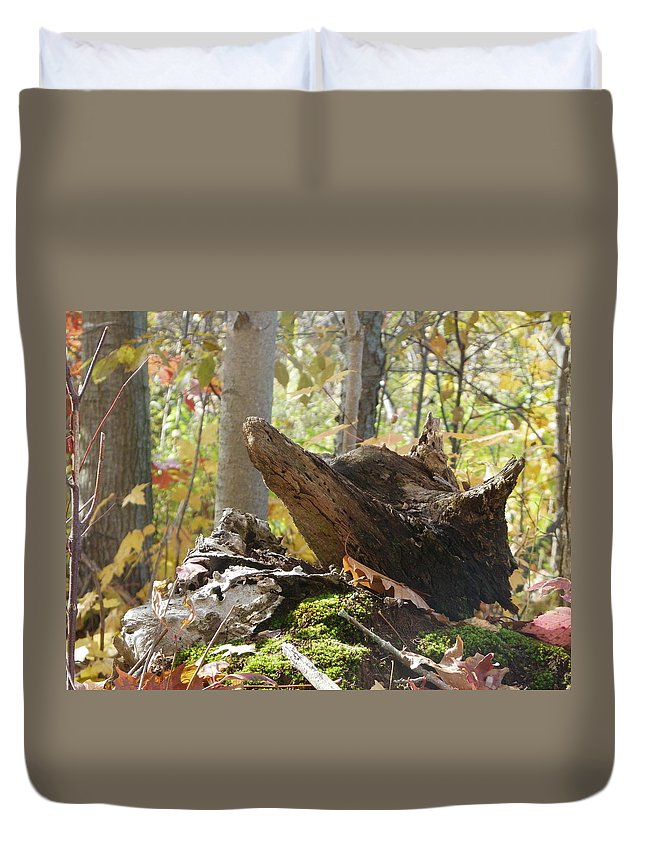 Nature Duvet Cover featuring the photograph Foxy Stump by Peggy King