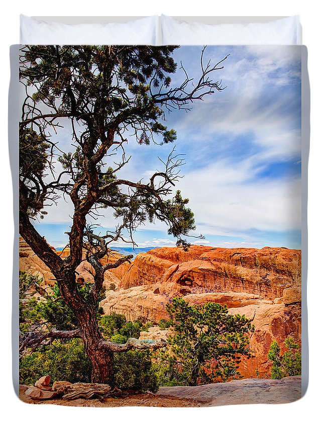 Outdoor Duvet Cover featuring the photograph Framed Arch by Chad Dutson