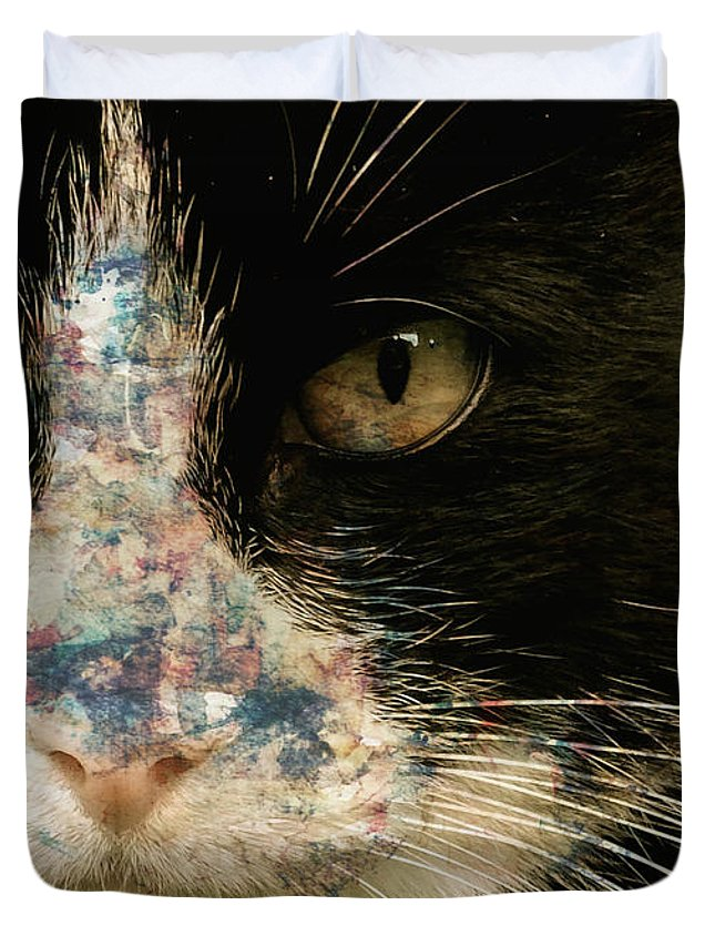 Eyes Duvet Cover featuring the painting Frankie by Paul Lovering