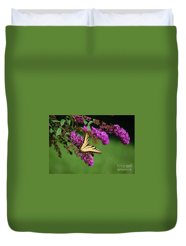 Butterfly Duvet Cover featuring the photograph Freedom by Debbi Granruth