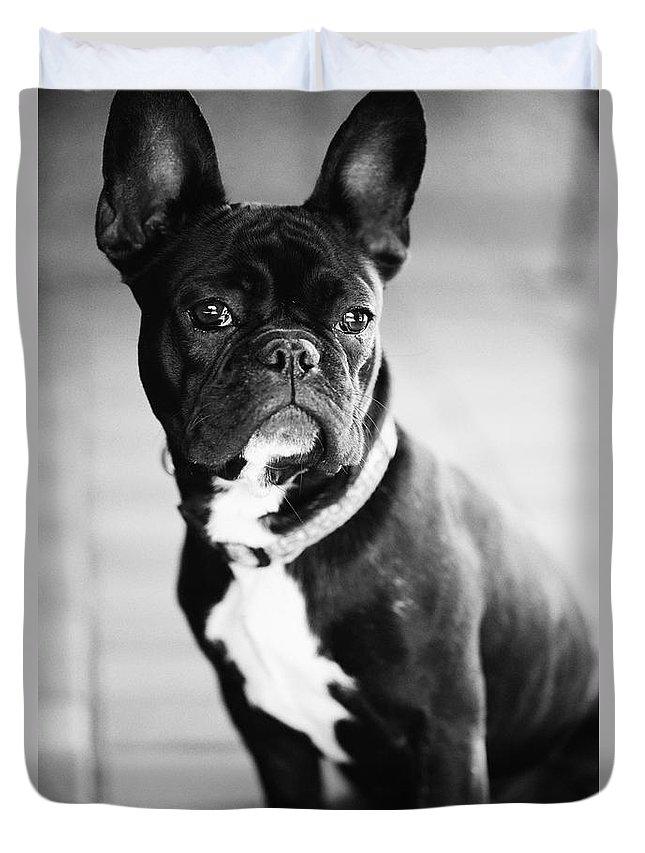 French Bulldog Duvet Covers