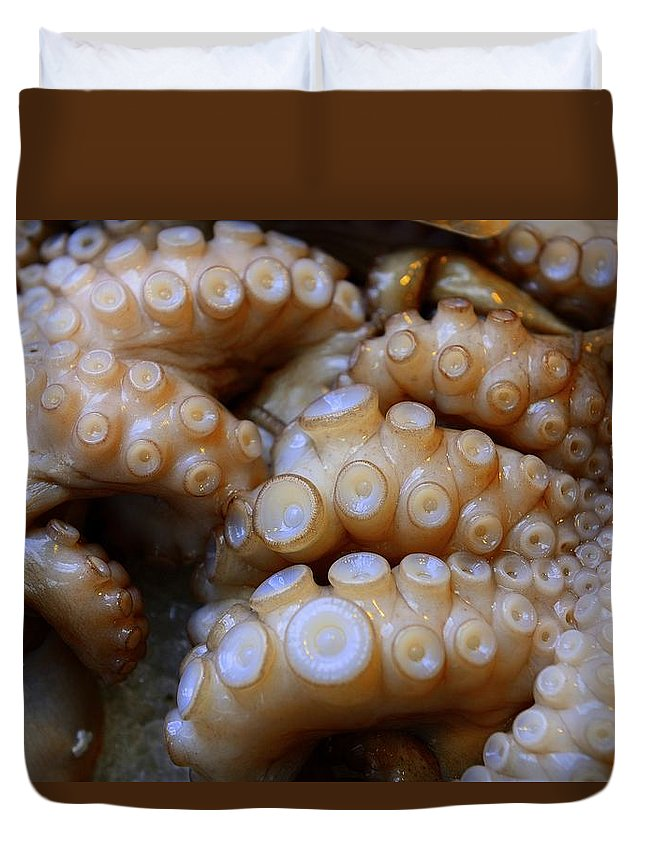 Octopus Duvet Cover featuring the photograph Fresh Octopus by Clyn Robinson