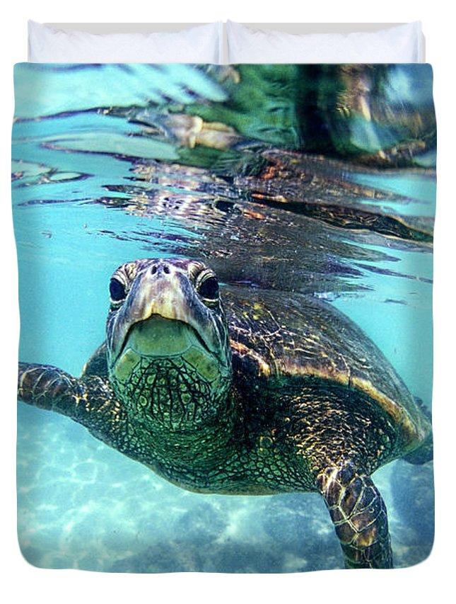 Friendly Hawaiian Sea Turtle Duvet Cover For Sale By Sean