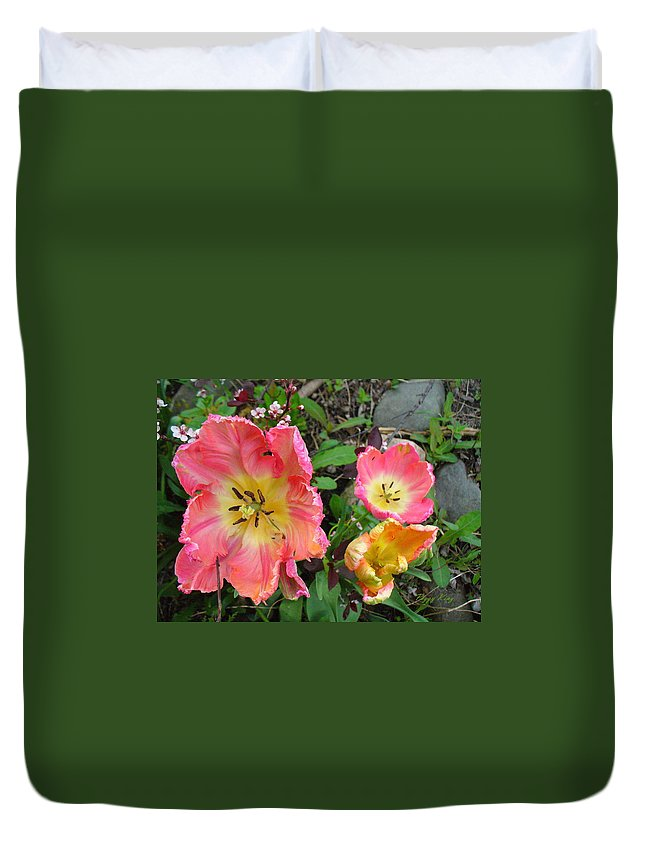 Tulips Duvet Cover featuring the photograph Fringed Tulips by Peggy King
