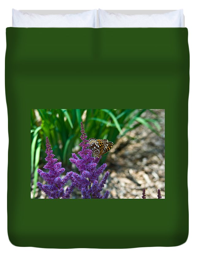 Butterfly Duvet Cover featuring the photograph Fritllary Butterfly On Astilbe by Douglas Barnett