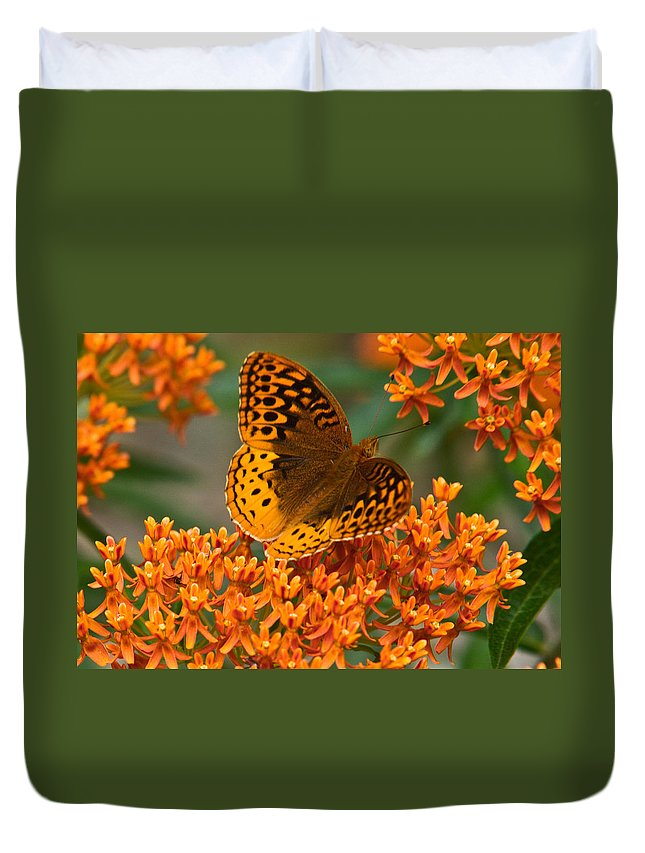 Frittalary Duvet Cover featuring the photograph Frittalary Milkweed And Life by Douglas Barnett