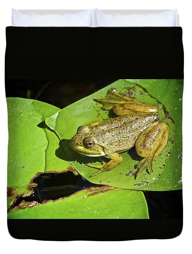 Frog Duvet Cover featuring the photograph Frog 2 by Robert Skuja