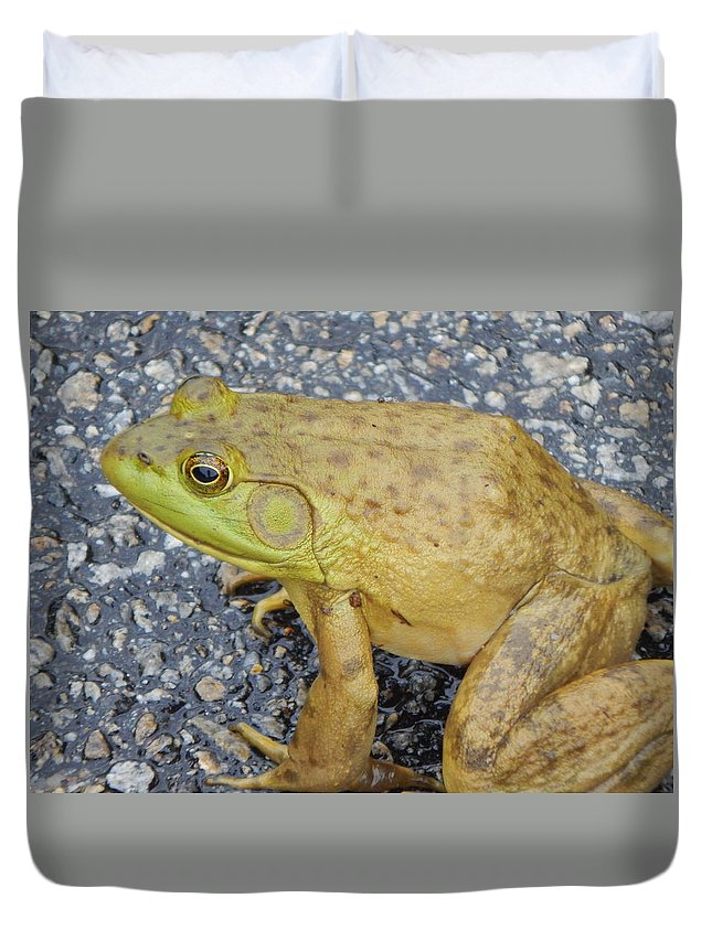 Frog Duvet Cover featuring the photograph Frog by Amanda Holt