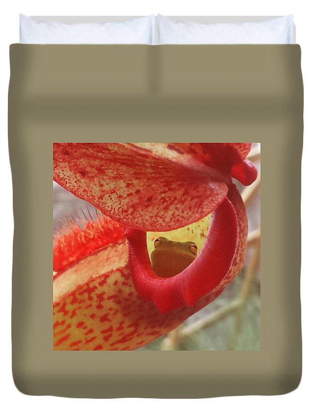 Frog Duvet Cover featuring the photograph Frog In The Shade by Michelle Brooksbank