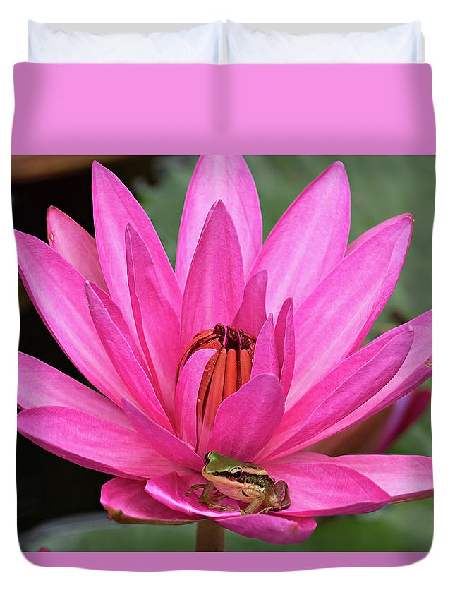 Lotus Duvet Cover featuring the photograph Frog Prince by Lik Batonboot