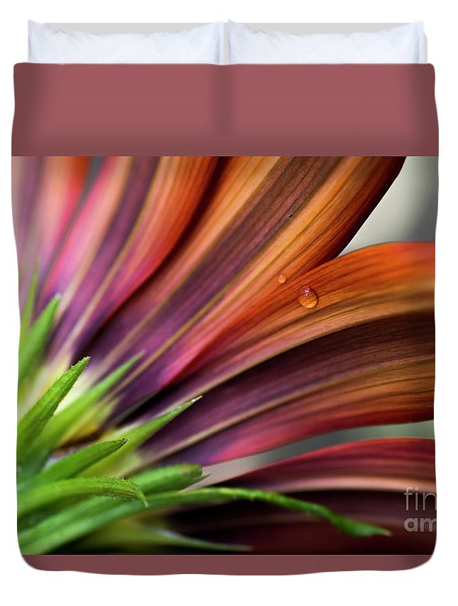 Wilton Duvet Cover featuring the photograph From Behind by Wendy Wilton