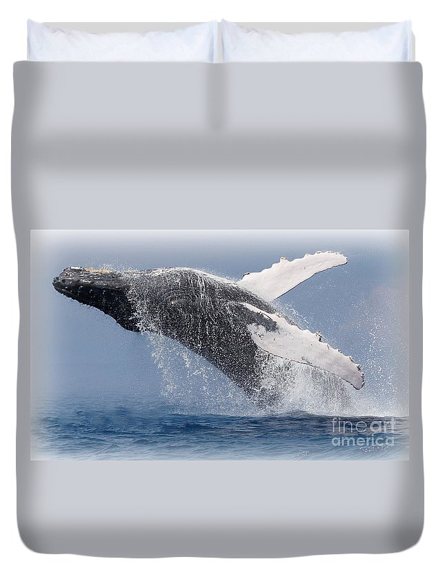 Humpback Duvet Cover featuring the photograph From The Blue by Tim Rock