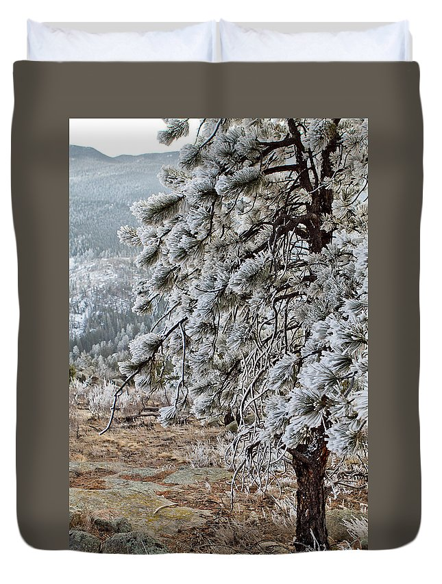 Colorado Duvet Cover featuring the photograph Frost-covered Pine by Sandy Swanson