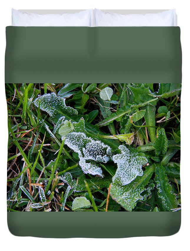 Frost Duvet Cover featuring the photograph Frost by Kathryn Meyer