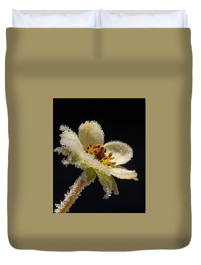 Frost Duvet Cover featuring the photograph Frost On The Flower by Yuri Hope