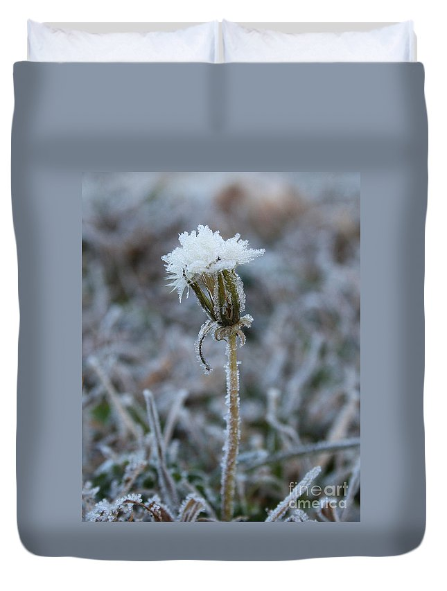 Frost Duvet Cover featuring the photograph Frosted by Lynn Jackson