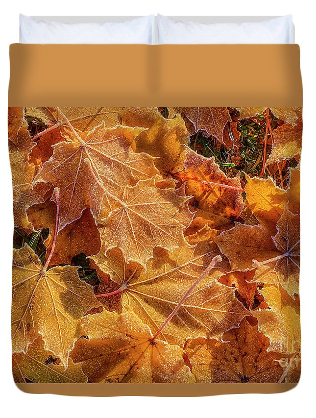 Atmosphere Duvet Cover featuring the photograph Frosted by Veikko Suikkanen