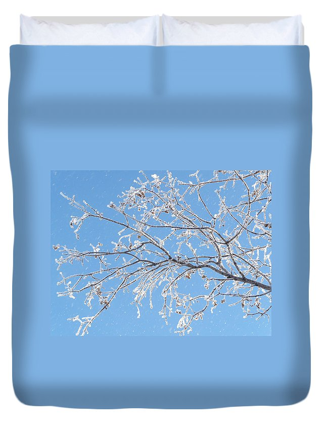 Hoar Frost Duvet Cover featuring the photograph Frosty Branch by Ruth Kamenev