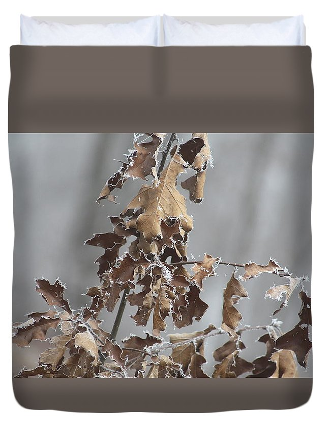 Frost Covered Leaves Duvet Cover featuring the photograph Frosty Morning 2 by Mike Poorman