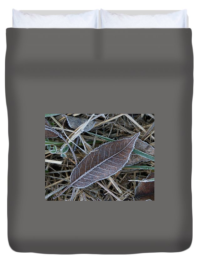 Frosty Duvet Cover featuring the photograph Frosty Veined Leaf by Douglas Barnett