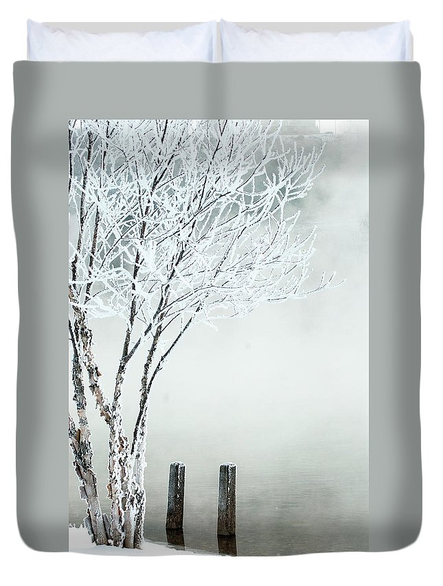 Tree Duvet Cover featuring the photograph Frozen by Annette Persinger